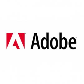 Adobe INT