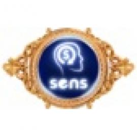 SENSGAME